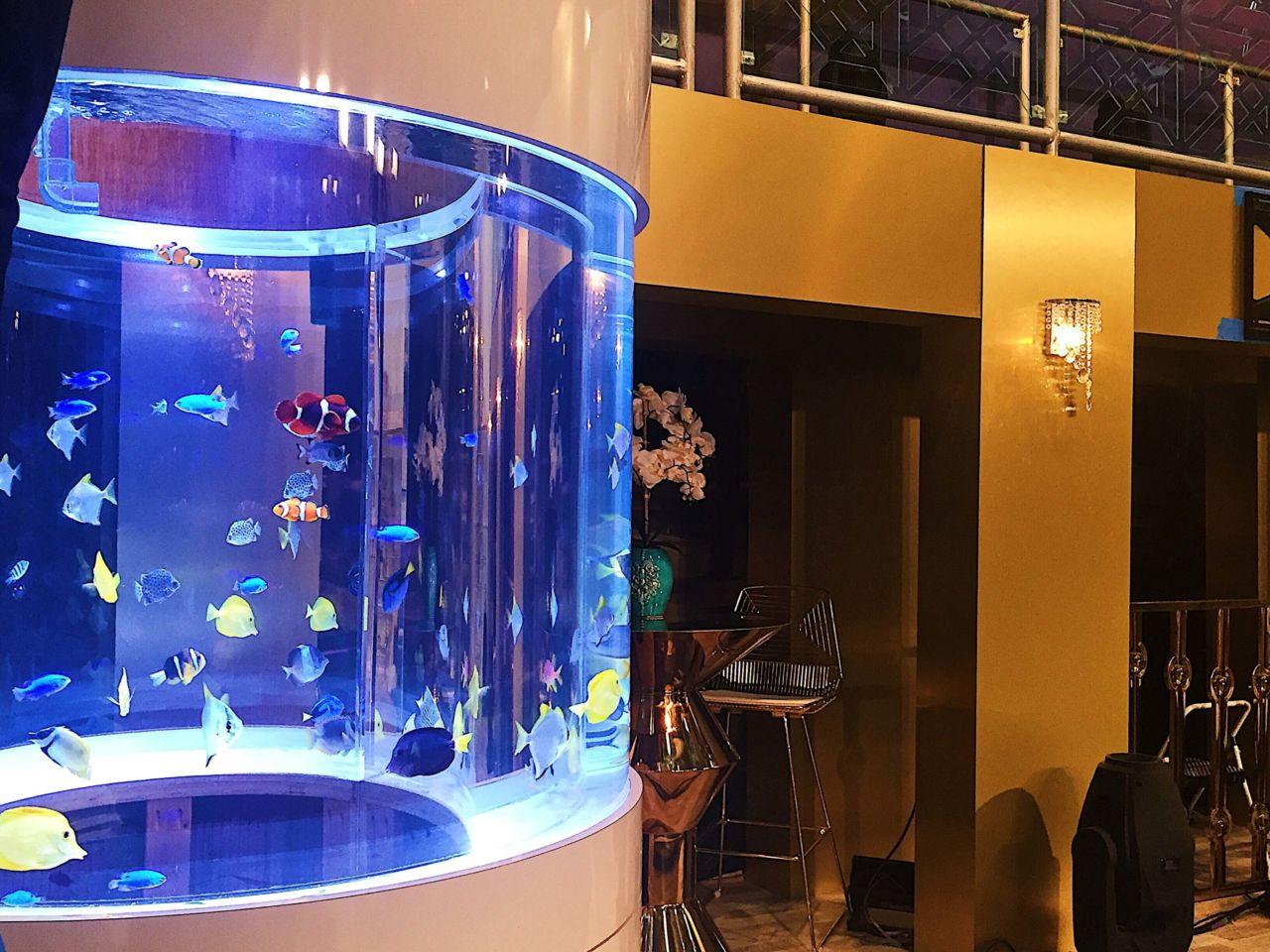 Aquarium Rental - Reef Bar Aquarium Services - reef-bar.com