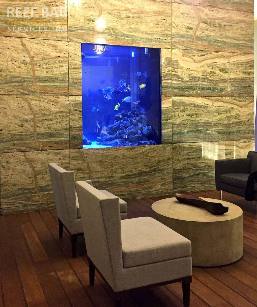 1000 Gallon Saltwater Tank - Reef Bar Aquarium Services - reef-bar.com